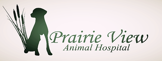 Prairie View Animal Hospital